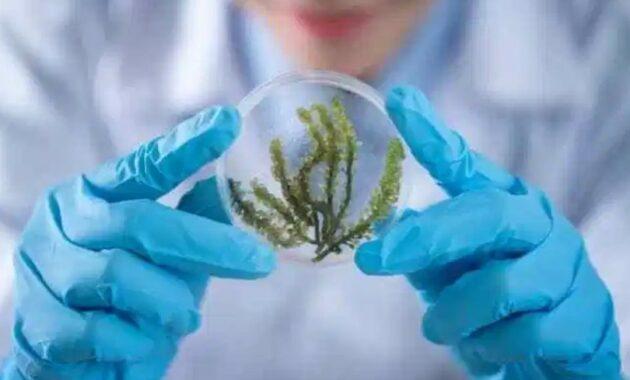 Apa itu Biokimia ? Pengertian Dan Sejarah Lengkap ilmu Biokimia