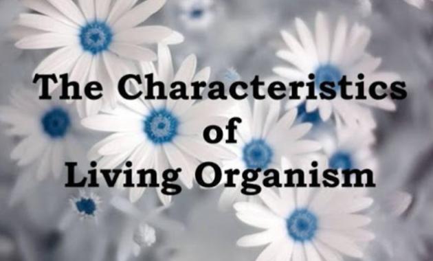 Ciri ciri organisme hidup